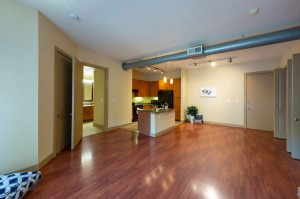 One Bedroom Apartments in Houston, Texas - Apartment Living Room, Dining Room with Bathroom View